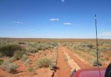Simpson Desert 2012